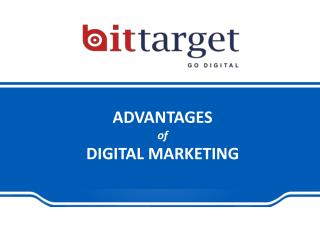 Bittarget-Advantages of Digital Marketing | 9999623343