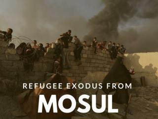 Refugee exodus from Mosul