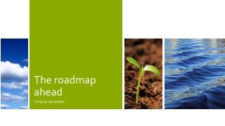 The SDGs the Road Ahead