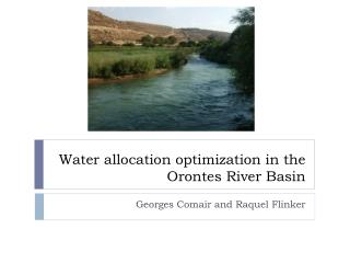 Water allocation optimization in the Orontes River Basin
