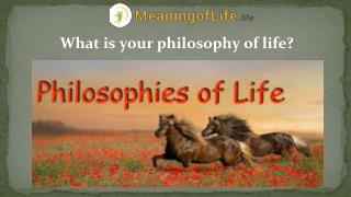 What is your philosophy of life