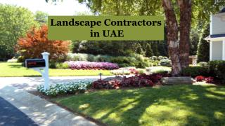 Landscape Designers Services in Dubai