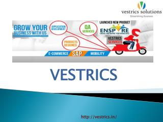 Ecommerce Solution Integration with SAP-Vestrics