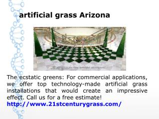artificial grass Arizona