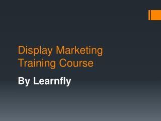 Learnfly: Online Display Marketing Training in Delhi/NCR
