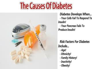 The Diabetes Solution Book | Diabetes Solution