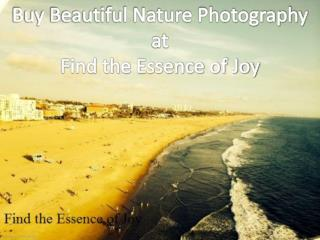 Buy Beautiful Nature Photography at Find the Essence of Joy