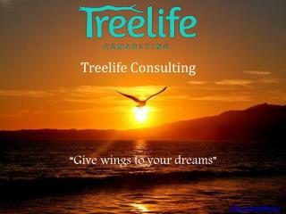 Treelife Consulting - One-Stop-Solution for Every Emerging Business