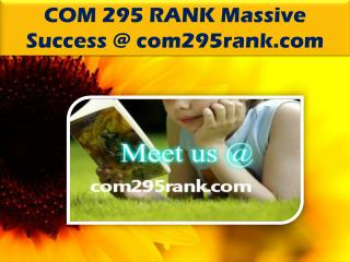 COM 295 RANK Massive Success @ com295rank.com