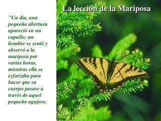 La lecci n de la Mariposa