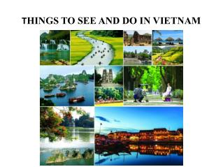 THINGS TO SEE AND DO IN VIETNAM