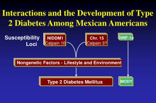 Interactions and the Development of Type 2 Diabetes Among Mexican Americans