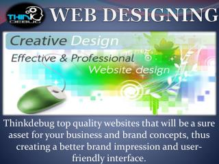 Thinkdebug is Software Company which provides the best web services in India.