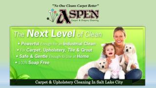 Carpet & Upholstery Cleaning In Salt Lake City