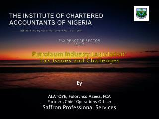 TAX PRACTICE SECTOR TOPIC:  Petroleum Industry Legislation:   Tax Issues and Challenges