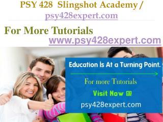 PSY 428  Slingshot Academy  /  psy428expert.com