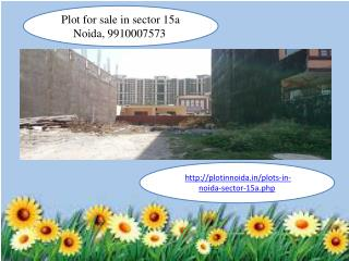 Plot in Noida sector 15a, Plot for sale in sector 15a Noida, 9910007573