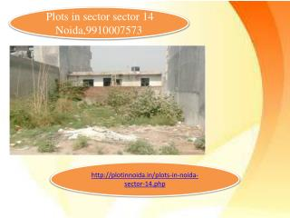 Plots for sale in sector 14 Noida, plots in sector 14 noida, plots in Noida, 9910007573