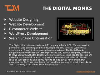 The Digital Monks- Web development services in delhi NCR