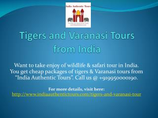 Tigers and Varanasi Tours from India