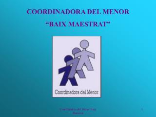 Coordinadora del Menor Baix Maestrat