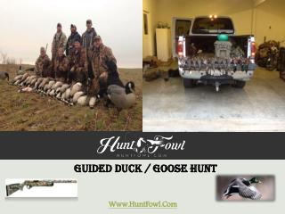 Guided Goose Hunt