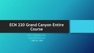 ECN 220 Grand Canyon Entire Course