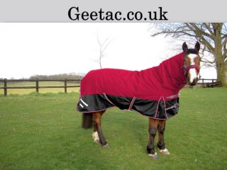 Cheap Exercise Hi-Viz Horse Rugs