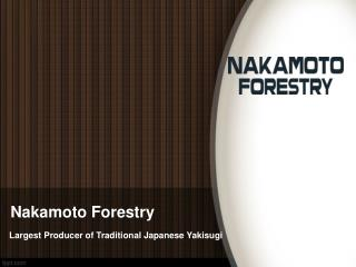 Nakamoto Forestry: Japanese Charred Wood
