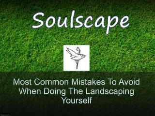 Most Common Mistakes To Avoid When Doing The Landscaping Yourself
