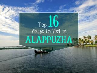 Top 16 Places to Visit in Alappuzha