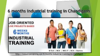 6 month industrial training in chandigarh