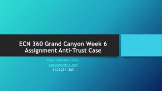 ECN 360 Grand Canyon Week 6 Assignment Anti-Trust Case
