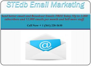 Email Marketing Campaign Strategies