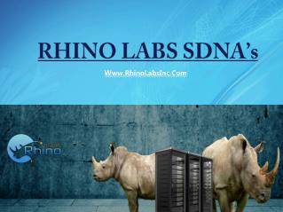 SDNA - Rhino Labs