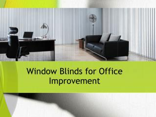 Window Blinds for Office Improvement