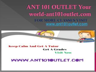 ANT 101 OUTLET Your world-ant101outlet.com