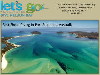 Best Shore Diving in Port Stephens, Australia