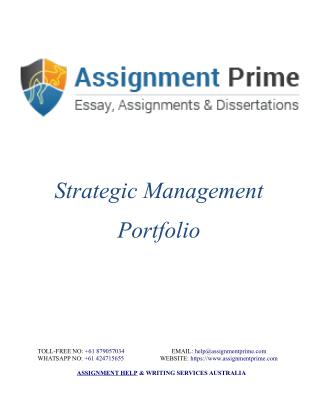 Sample Assignment on Strategic Management Portfolio