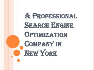 Famous Search Engine Optimization Company in New York