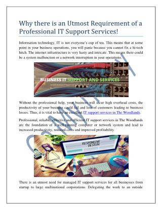 Why there is an Utmost Requirement of a Professional IT Support Services!