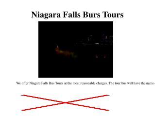 Niagara Falls Burs Tours
