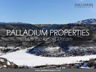 Palladium Properties