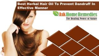 Best Herbal Hair Oil To Prevent Dandruff In Effective Manner
