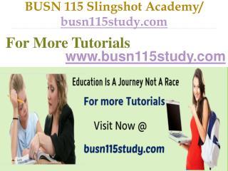 BUSN 115 Slingshot Academy /  busn115study.com