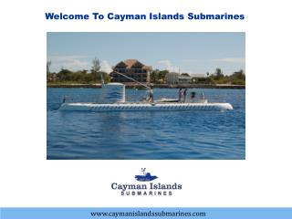 Enjoy your Cayman tour with the SeaWorld observatory
