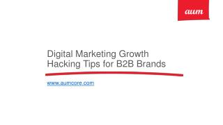 Digital Marketing Growth Hacking Tips for B2B Brands