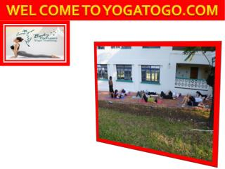 Enroll yourself for yoga teacher training Ontario classes today at Yogatogo