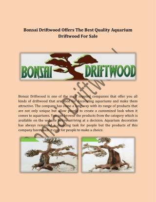 Bonsai Driftwood Offers The Best Quality Aquarium Driftwood For Sale