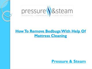 How To Remove Bedbugs With Help Of Mattress Cleaning